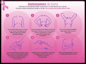 imm_infografia_autoexamenmama